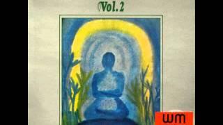 joel vandroogenbroeck -  Meditative contemplation