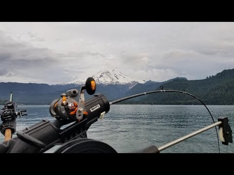 2019 Sockeye Fishing At Baker Lake.