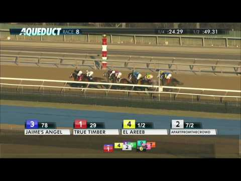 El Areeb - 2017 Withers Stakes