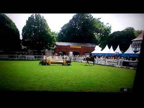 Ballinapark Max, RDS Horse Show