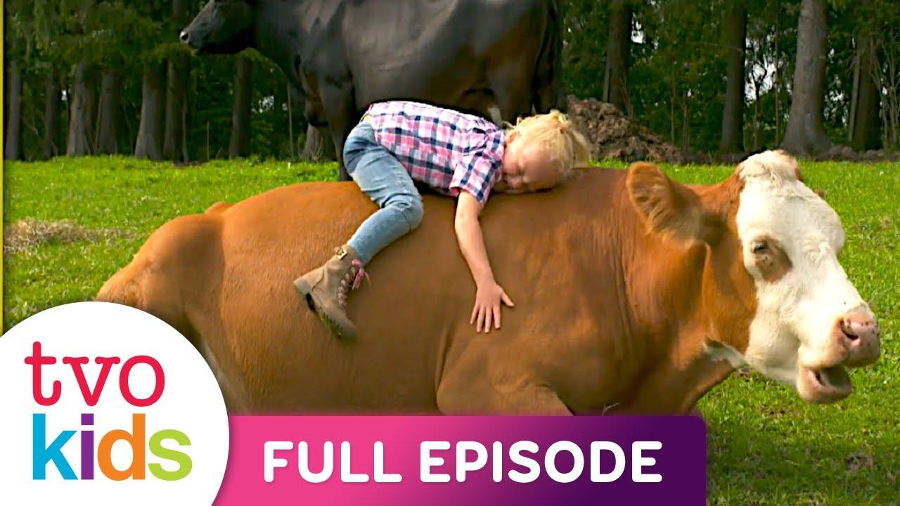 GABBY'S FARM - Dairy Farm - Full Episode