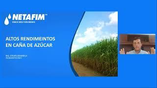 CURSO EN LINEA - Caña de azúcar Módulo 1  ¿Cómo lograr altos rendimientos con riego por goteo?