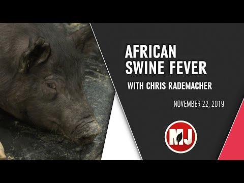 African Swine Fever | Chris Rademacher | November 22, 2019