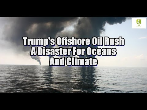 Trump's Offshore Oil Rush A Disaster For Oceans And Climate