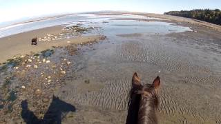 hcbc helmet cam riding on the beach
