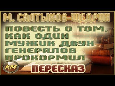 Повесть о том, как ОДИН мужик ДВУХ генералов прокормил. Михаил Салтыков-Щедрин