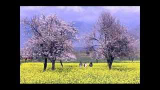 ASHA BHOSLE SONG-KYOON KHOON BAHA  FILM-CHAND GRAHAN  MUSIC-SANTOSH NAIR  LYRICS-RAJESH JOHARI.wmv
