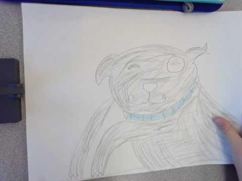 Grayson bad dog dodger