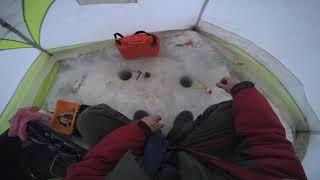 Рыбалка в непогоду Прорвался к переметам
