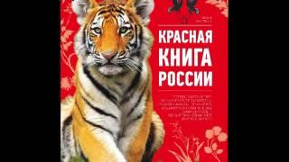 Красная книга окружающий мир 2 класс