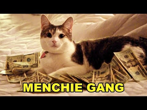 Download Youtube: Menchie Gang, Menchie Gang, Menchie Gang, Menchie Gang, Menchie Gang, Menchie Gang, Menchie Gang