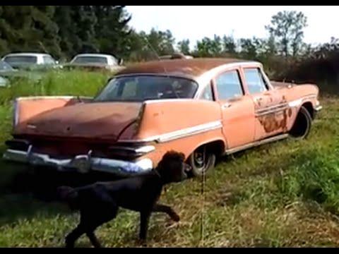 Field Find: Rare 1959 Dodge Viscount!