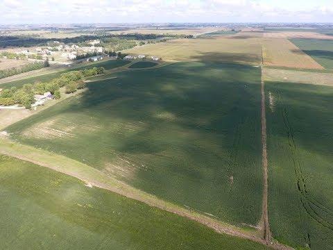 Copeland - Jefferson County, Iowa Land Auction - 32± Acres