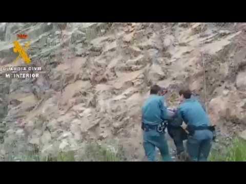 Liberan a un corzo atrapado en una red metálica en Vegadeo