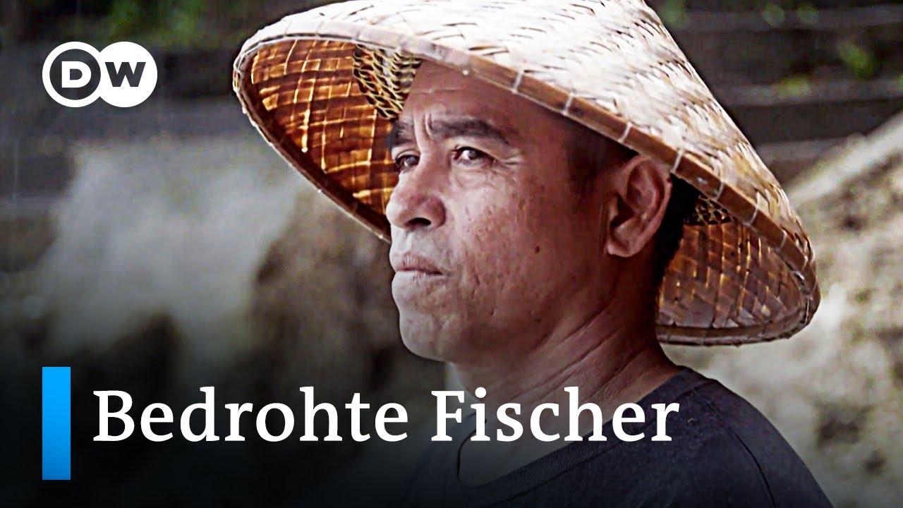 Philippinen: Fischbestände unter Druck | Global Ideas