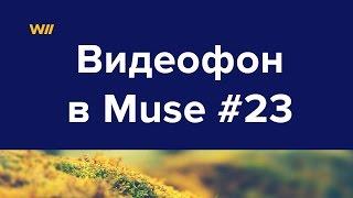 Создание видеофона на лендинге в Adobe Muse #23