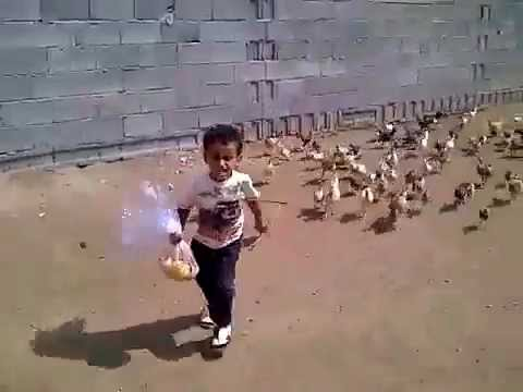 Kid Running Funny Meme : So funny little boy getting chased by hungry chickens youtube