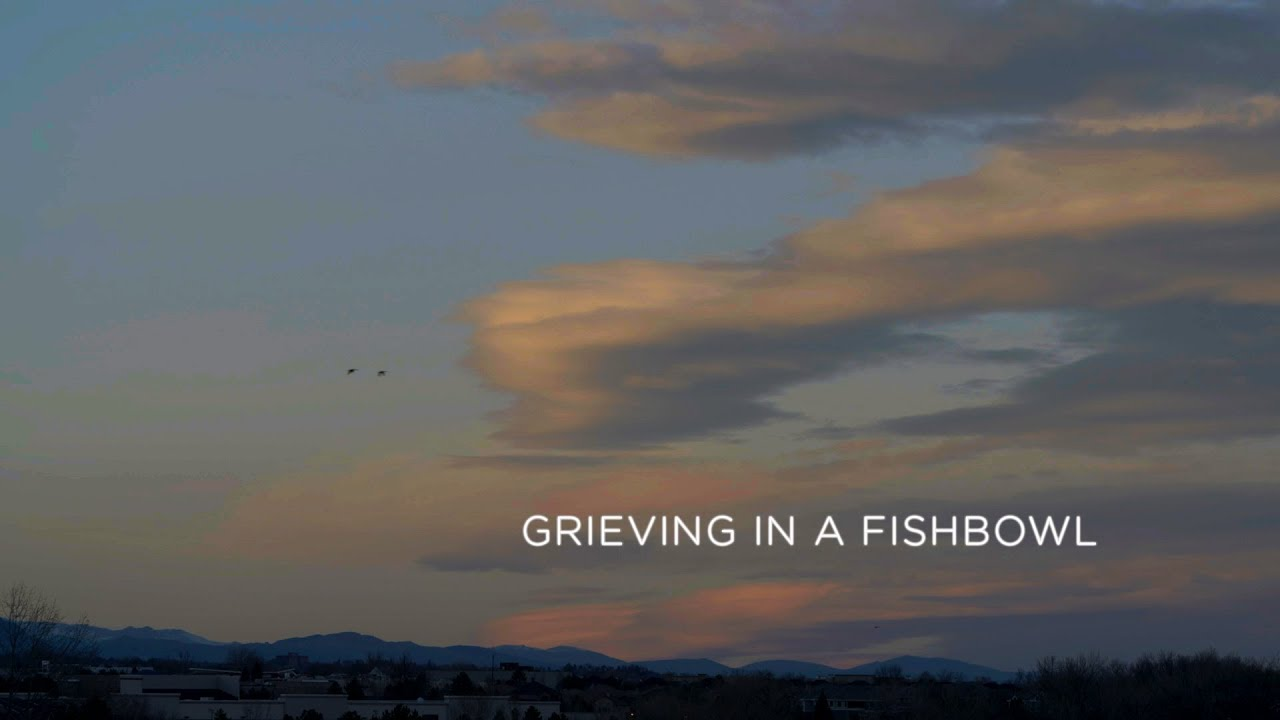 Grieving in a Fishbowl | Reveal