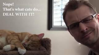 Парень мстит коту за мяуканье среди ночи— Vengeance Meow
