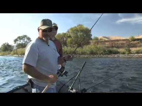 Plug Fishing Aka Back Trolling