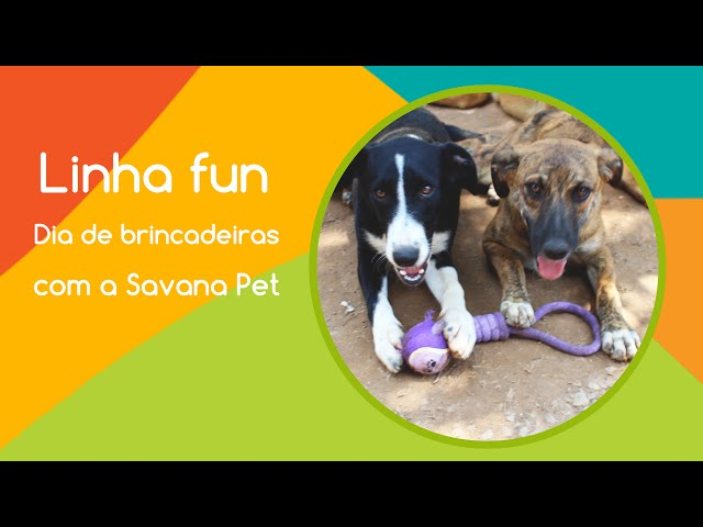 Savana Pet na ONG Clube dos Vira - Latas