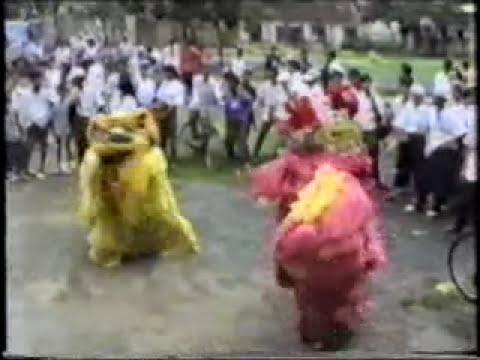 Đoàn Lân Phù Đổng Q.6 những năm đầu thành lập (1989-1991)p.8