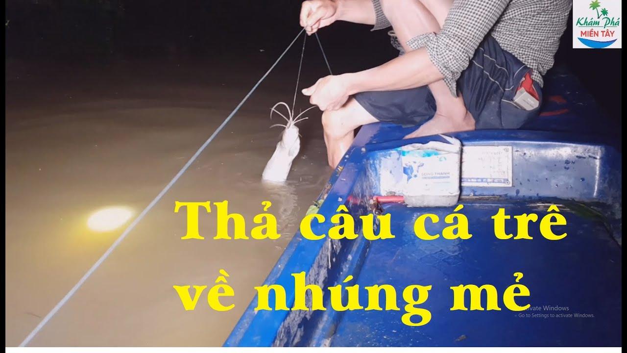190 | Giăng câu cá trê về nhúng mẻ P1 | Fishing