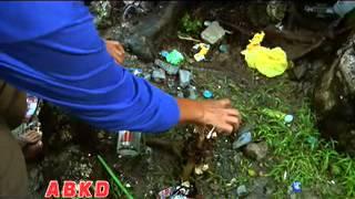 doh dengue abkd mov