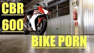 BIKE PORN | HONDA CBR 600 F | BIONDO