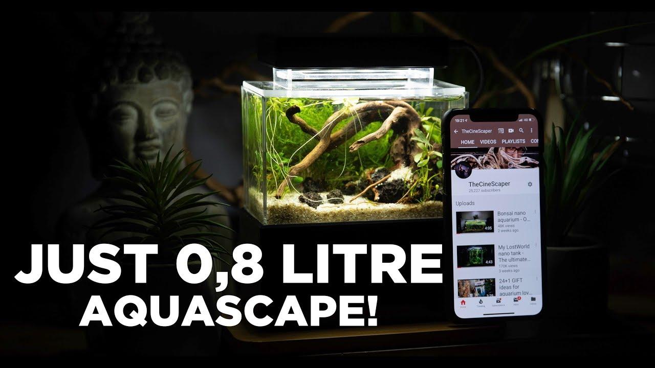 Aquariumowner Instagram Posts Gramha Net