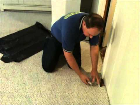 How To Remove Wet Carpet In Basement