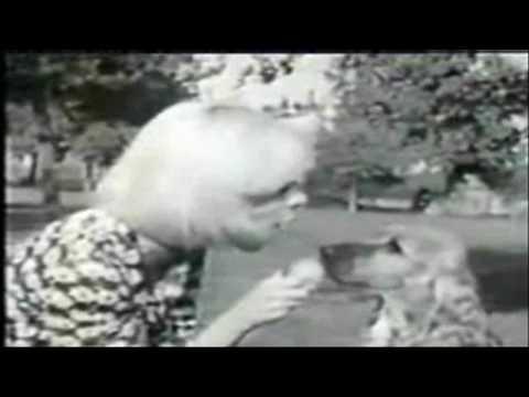═- SYLVIE VARTAN -═  DANS TES BRAS, JE N'Y PENSE PAS  -═  widescreen+ lyrics fr/engl & HD)