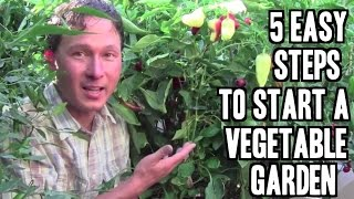5 Easy Steps To Start A Vegetable Garden In Las Vegas Or Anywhere