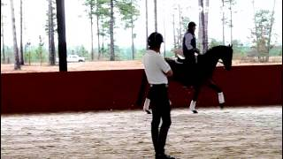 USEF Eventing High Performance Training Sessions