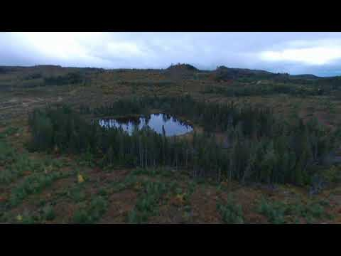 Western Newfoundland Cut Over and Wilderness From A Drones Eye View !