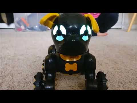 Unboxing WowWee Chippies - Chippo !
