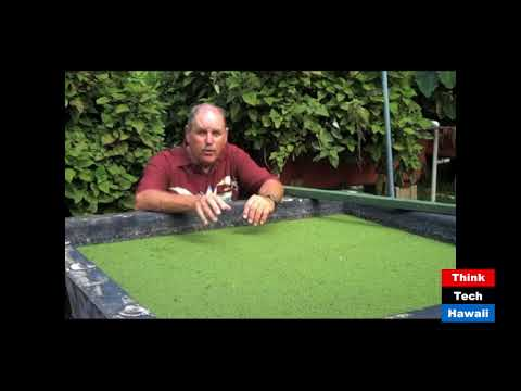 ATOLL. Aquaculture/Aquaponics Training Online Learning Lab (Discovering Aquaponics In The Garden)