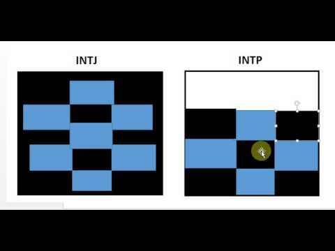 INTJ and INTP - Theory on Different Mental Processes