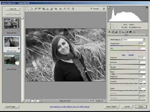 Achieving great black white in adobe camera raw