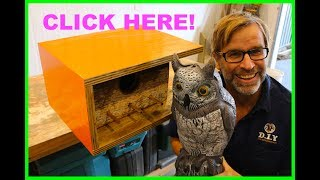 How to Build a Birdhouse. Easy, Quick & Cheap!