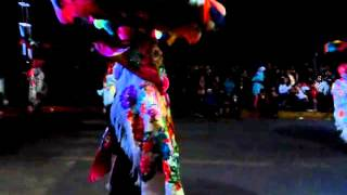 Carnaval tepeyanco camada primera culebra 2016