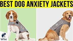 8 Best Dog Anxiety Jackets 2019