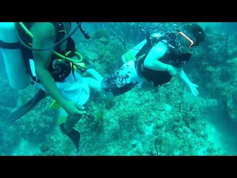 6th dive at the Grand Bahamas