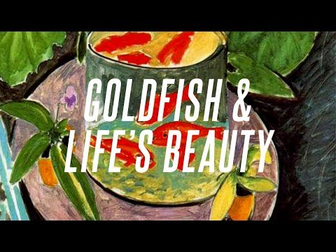 Matisse's Goldfish And The Beauty Of Life