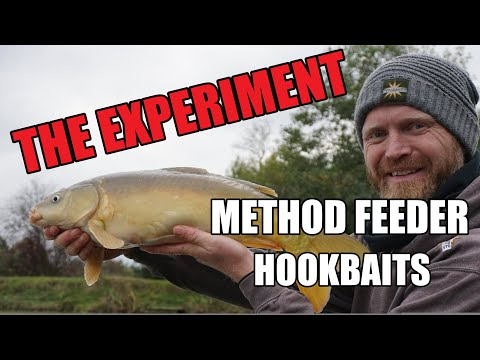 Method Feeder Fishing For Carp | Method Feeder Hookbaits | The Colour Test! Rob Wootton.