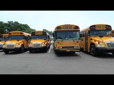 Bird Bus Sales Visit