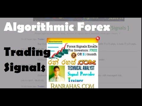 Algorithmic Forex Trading