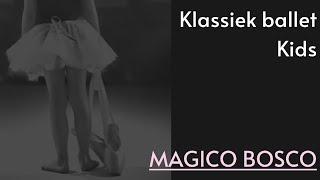 Magico Bosco