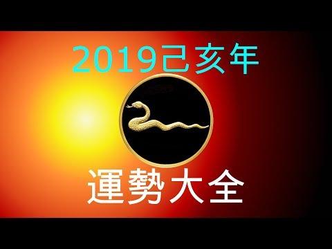 2019年己亥年運勢大合集:肖蛇者