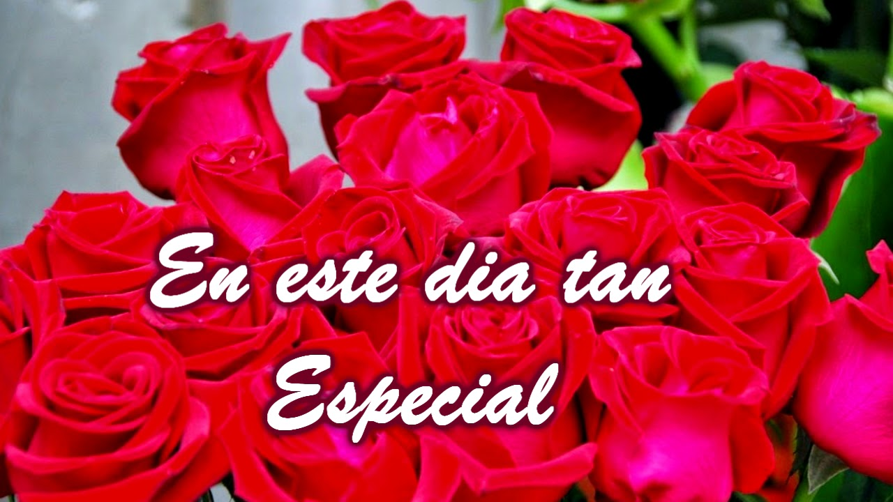 Felicitación Cumpleaños con Rosas Rojas YouTube
